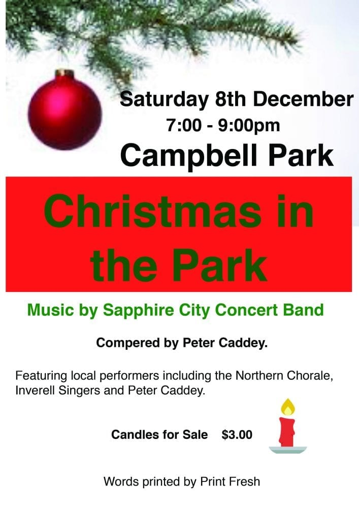 Christmas in the Park - 8 December 2018 - 7pm