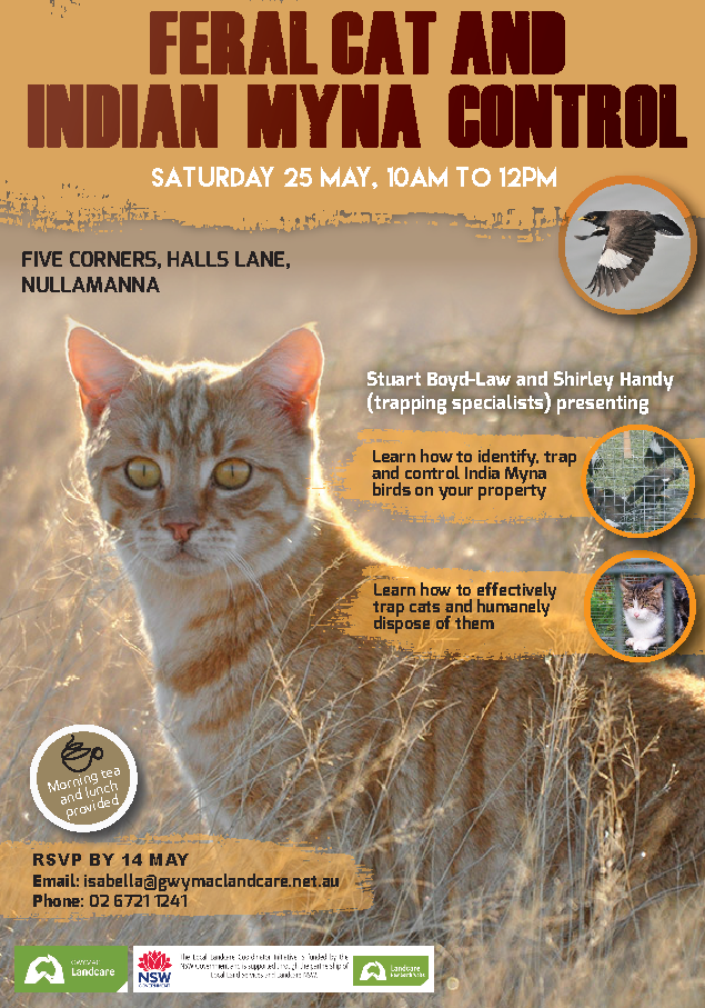 Feral Cat and Indian Myna Bird Information Session - 25 May 2019