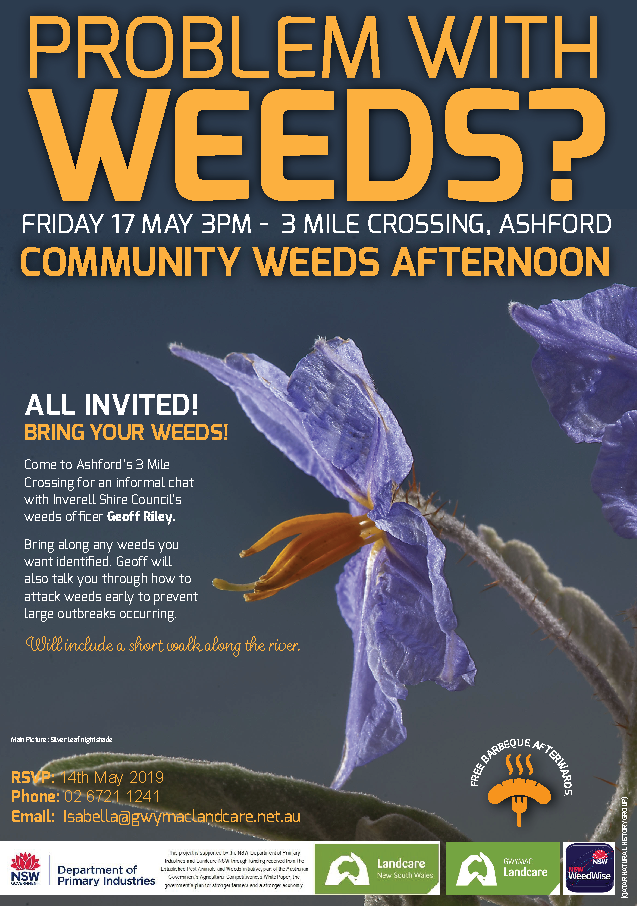 Community Weeds Afternoon - 17 May 2019
