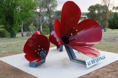 Poppy Sculpture Installation